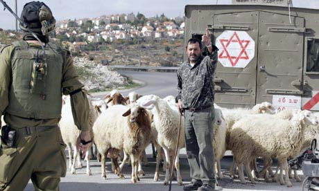 Pastore palestinese ferito dai militari israeliani a Rafah