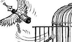 Giornalista palestinese rapito dall'intelligence di Abbas.