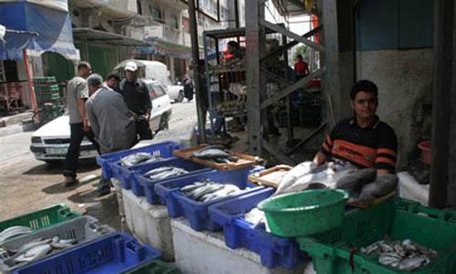 I prodotti ittici egiziani entrano nei mercati di Gaza