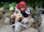 La Redazione di Infopal.it augura una felice 'Id al-Adha.