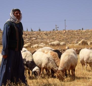 Bombardamento israeliano nel nord della Striscia uccide 3 pastori